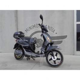 Scooter Elettrico Pedalata Assistita 250W Bicicletta Elettrica 48V 20Ah