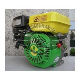 Motore Blocco Per Motozappa Motocoltivatore 6,5 HP 196/200cc