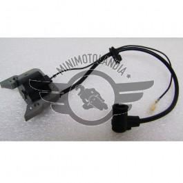 Bobina Motore Minicross Replica Morini
