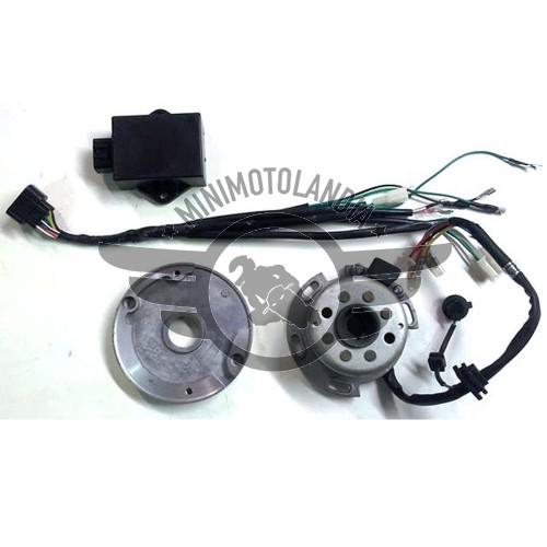 Centralina E Accensione Media Ad Anticipo Variabile Motore YX 150-160