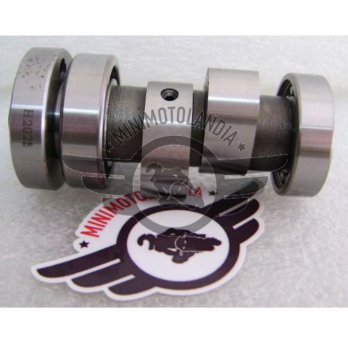 Albero A Camme Originale Per Motore YX Pit Bike 150/160cc