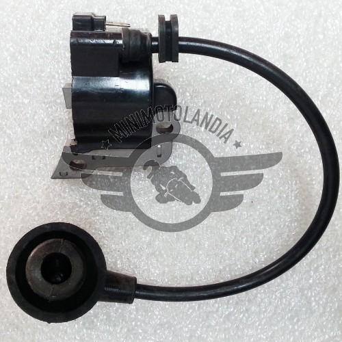 Bobina Motore CDI Soffiatore A Scoppio 25cc