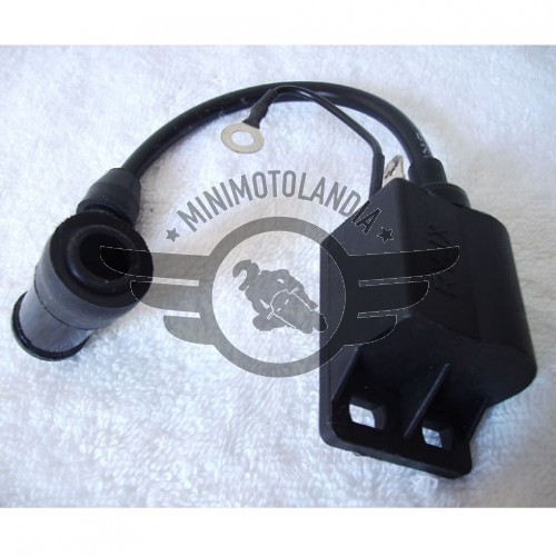 Bobina Accensione Minimoto Replica Reverse GP3