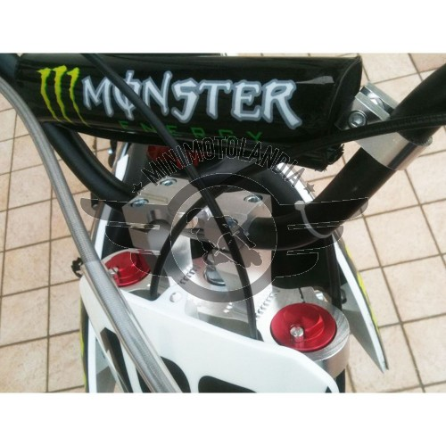 Pit Bike BSE Monster YX 140cc 14cv