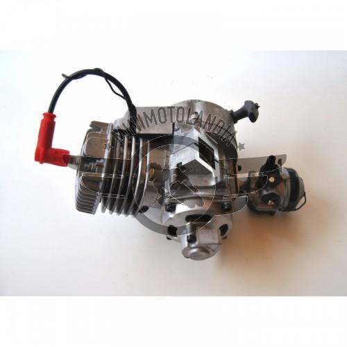 Motore Big Bore 70cc 5cv Carter in Fusione Per Minimoto Aria