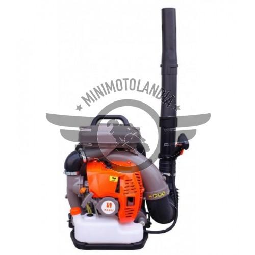 Soffiatore Aspiratore A Spalla Motore A Scoppio EB800