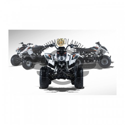 Quad ATV Viper 125cc 4 Tempi KAYO Semi-Automatico