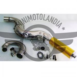 Marmitta Racing Jet Pro Oro Con Espansione Minimoto 49cc