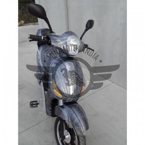 Scooter Elettrico Pedalata Assistita 250W Bicicletta Elettrica LITIO 48V 20Ah