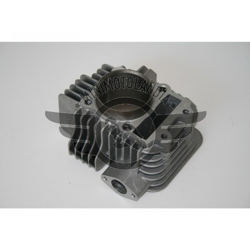 Cilindro 60mm Motore GPX Pit Bike 155cc Oilfilter