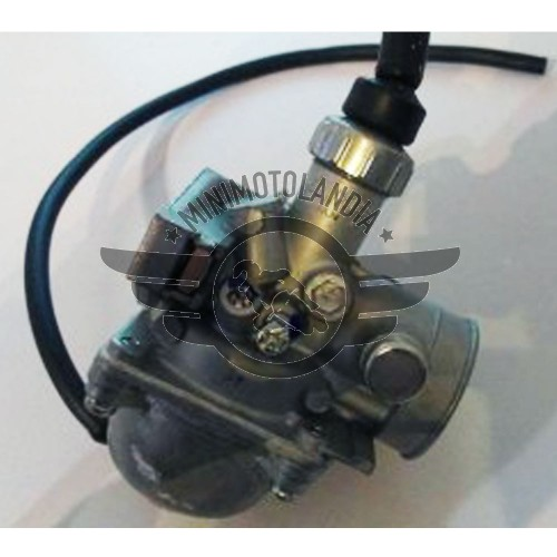 Carburatore Mikuni 16mm Per Pit Bike E Quad ATV 4 Tempi