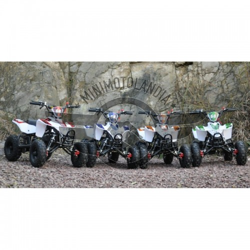 Miniquad ATV Fox XXL 50 cc 2 T Cerchio 6""