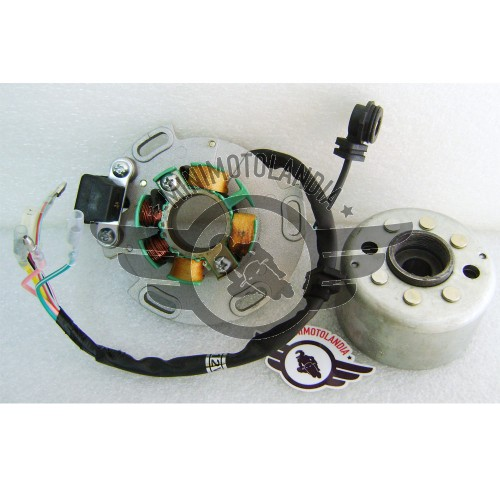 Accensione A Rotore Esterno Per Motore Lifan Pit Bike